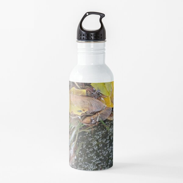 Tiny Bubble and Leaf Microscape Water Bottle