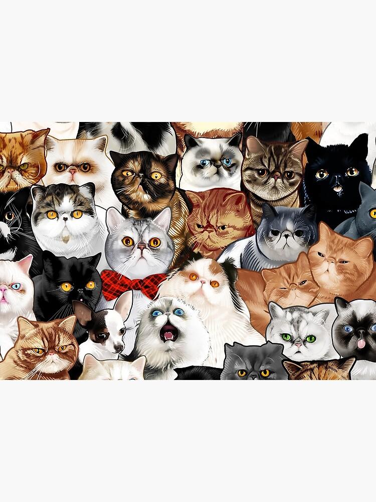 #Catminaproject by Jimiyo by jimiyo