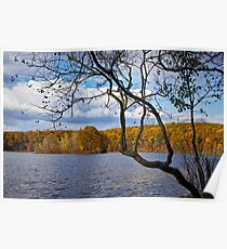 Hall Lake in Autumn No 0118 Poster