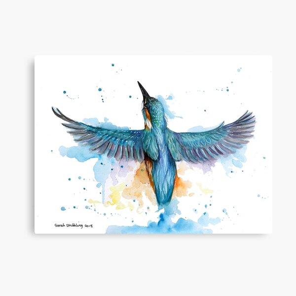 Watercolour Kingfisher in flight Metal Print