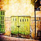 The Green Door  by Kelvin Hughes