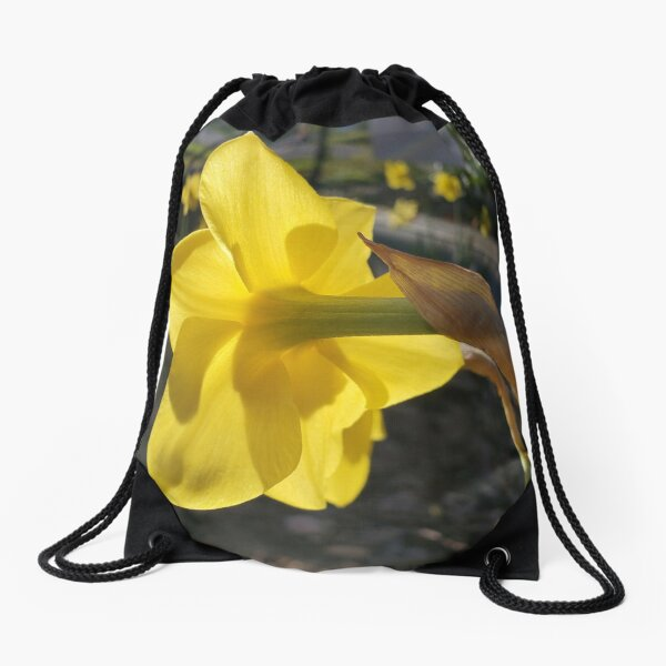 Sunlit Daffodil Bloom Drawstring Bag