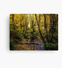 Creeks #44564 Canvas Print