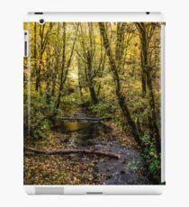 Creeks #44564 iPad Case/Skin