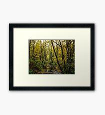 Creeks #88769 Framed Print
