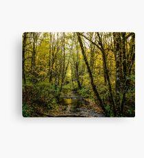 Creeks #88769 Canvas Print