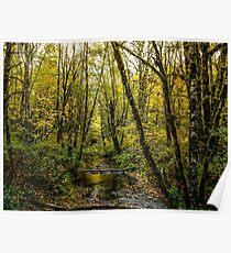 Creeks #88769 Poster