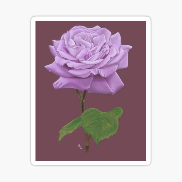 Lilac Rose floral art Sticker