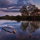 Serenity by Brian Kerr