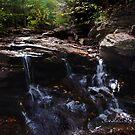 Conestoga Falls  by Debra Fedchin