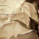 Romance in  sepia - Wedding by Celeste Mookherjee