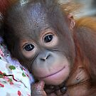 A Beautiful Baby by tearsinjungle