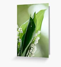 ♥ ♥ ♥ ♥ series . Beauty is the name, as so beautiful one could ever find, all love too you both always  ! Thank you  Norma-jean ! Valerie Anne Kelly  5 star Excellence . 1 favoritings 711 .  views. Greeting Card