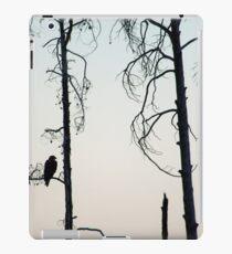 Bald Eagle-Signed-3072 iPad Case/Skin
