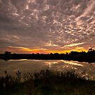 Rural Dam Sunset by bazcelt
