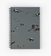 A Flock of Stalks Spiral Notebook