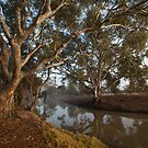 Burnt Creek by Andrew Cowell