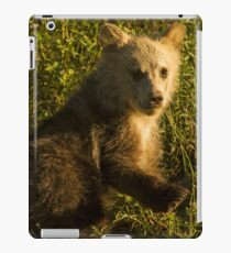 Grizzly Cub-Signed-3744 iPad Case/Skin