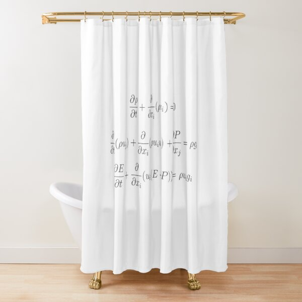 Conservation Laws for Gas Dynamics with a Classical Gravitational Field Shower Curtain