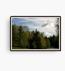 Mother Nature showing off... Canvas Print