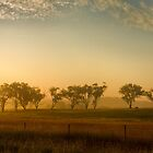 Smokey Sunset #3 ~ Cootamundra (NSW) by Rosalie Dale