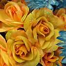 Sunshine Roses by Jane Neill-Hancock