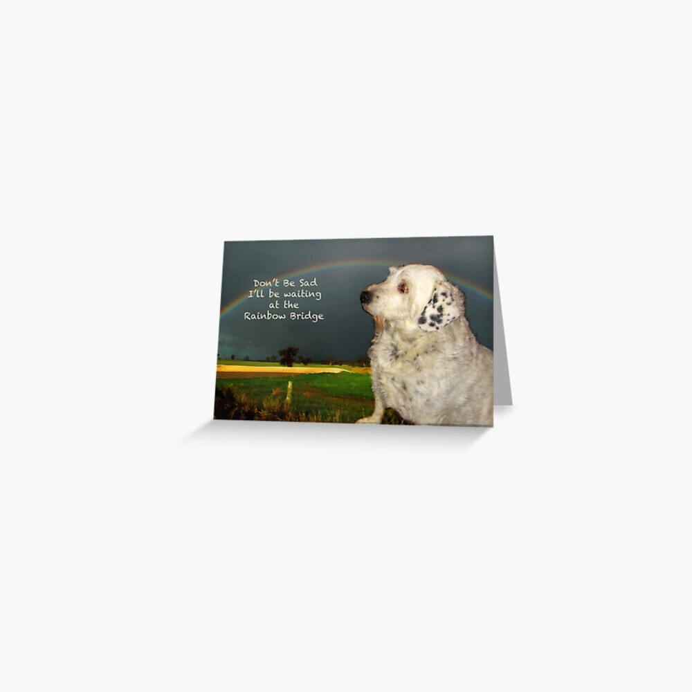 Sympathy Card For Pet Greeting Card