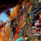 Rainbow Waterfall by Joel Fourcard