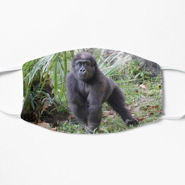 Moke den Gorilla im National Zoo Flache Maske