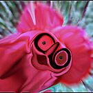 I WAS A FLOWER :):) by Sherri Palm Springs  Nicholas