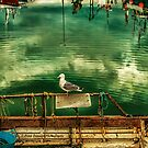 Harbour Reflections 02 by peter donnan