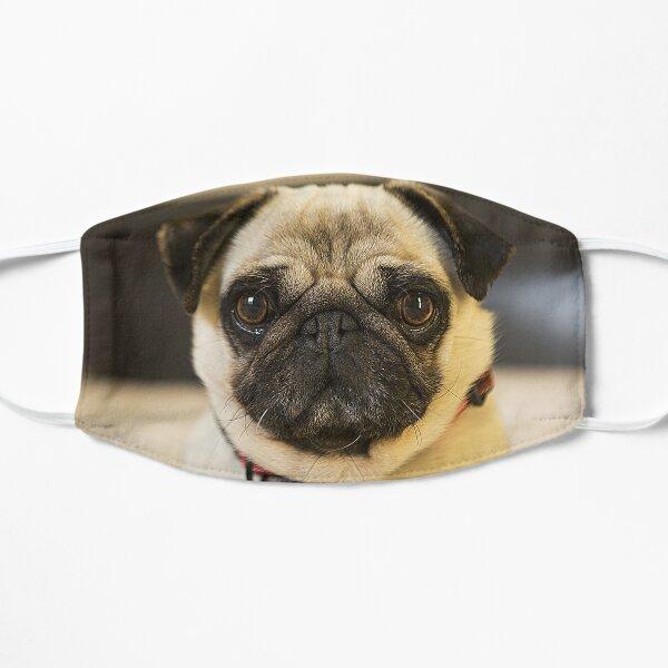 Pug Dog Lover 3D Flat Mask