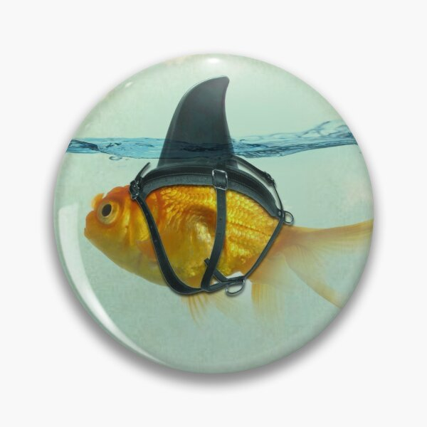 brilient disguise Pin
