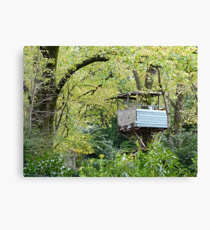 Tree-house at Mt Wilson Canvas Print