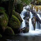 Cascading Down - Marysville, Victoria, Australia by Sean Farrow
