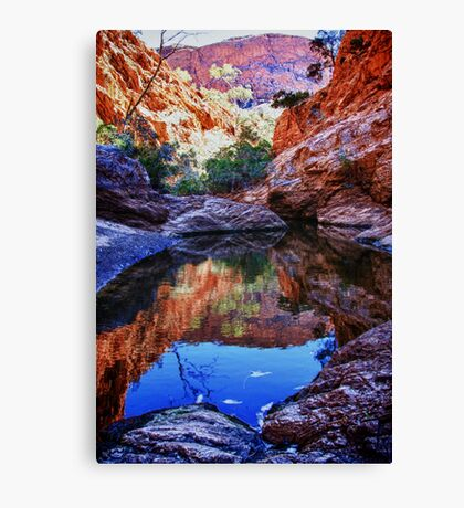Waterhole reflections Canvas Print