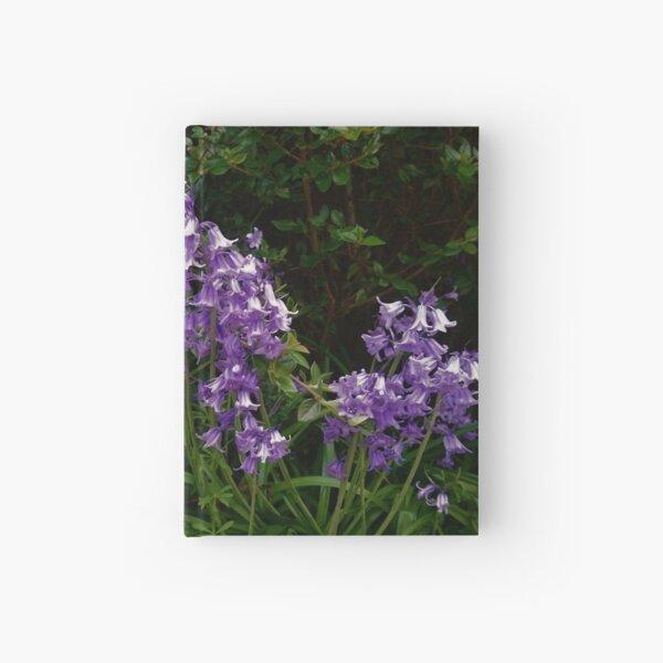 Bluebells 2 Hardcover Journal