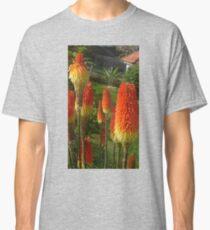Many Hotties Classic T-Shirt