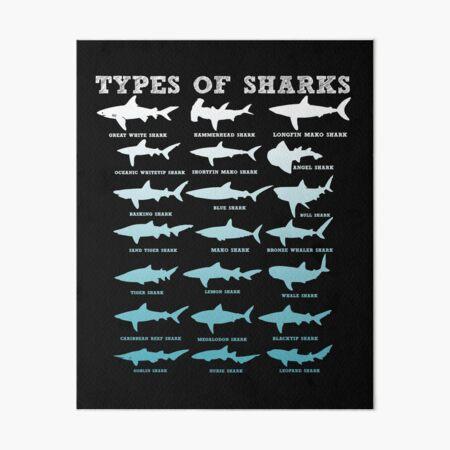 Types of Sharks Art Board Print