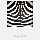 Zebra - iPhoneography by Marcin Retecki