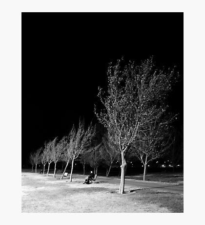 Ridgecrest Park in December Photographic Print