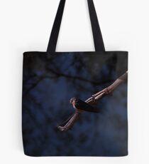 Scavenging Robbin Tote Bag