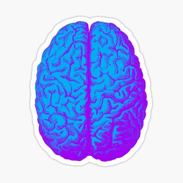 Brain Yoga Gifts Merchandise Redbubble