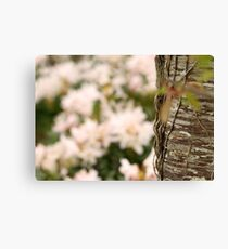 Woodland Blossoms Canvas Print