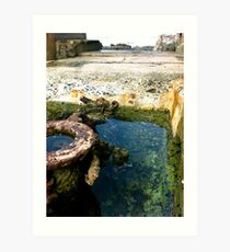 Wishing Well.  Art Print