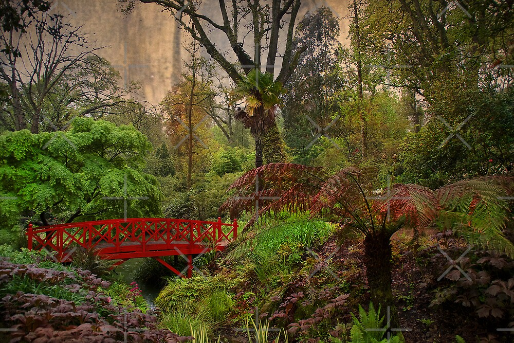 Jurassic Garden by Country  Pursuits