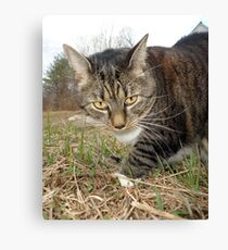 Lucy Lawns Canvas Print