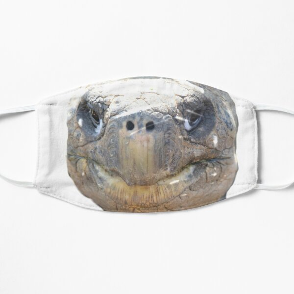 Tortoise. Flat Mask