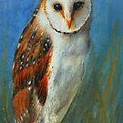 Barn Owl by Lynn Hughes