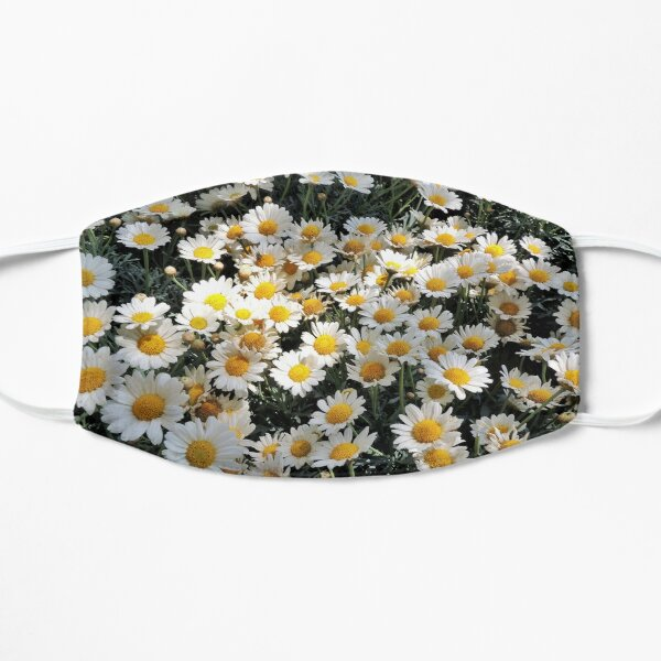 Daisies, daisy pattern, floral, botanical  Mask